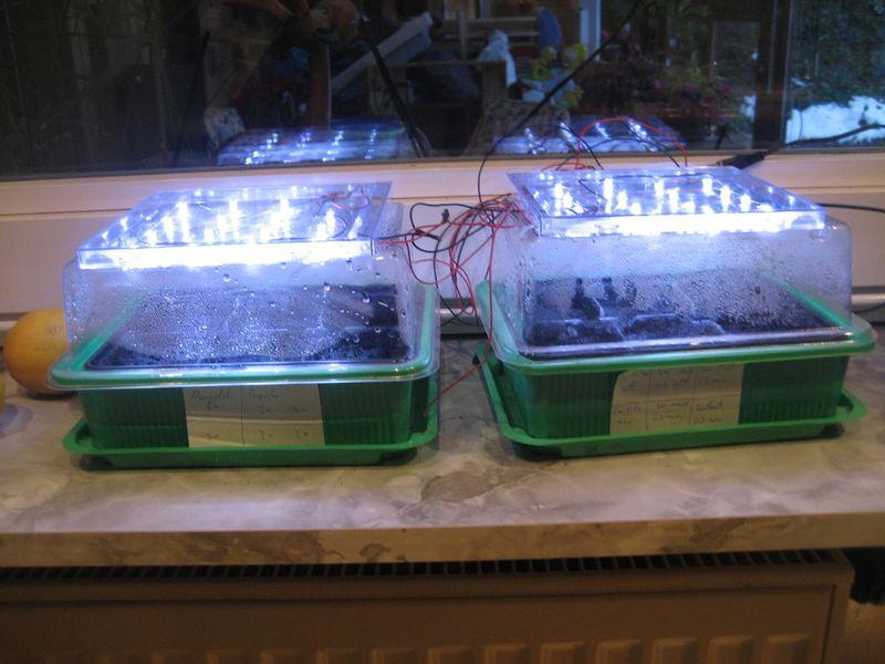 led pflanzenbeleuchtung v1 auf knolles elektronik basteln page bauanleitungen mit. Black Bedroom Furniture Sets. Home Design Ideas