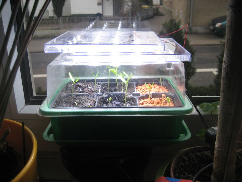 LED-Pflanzenbeleuchtung V1... auf Knolles Elektronik